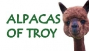 Alpacas of Troy